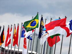 Starting grid for the 2019 Brazilian Grand Prix