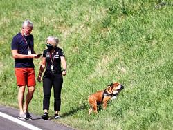 """Coulthard ziet Hamilton kraken: """"Het zijn veel kleine incidenten"""""""
