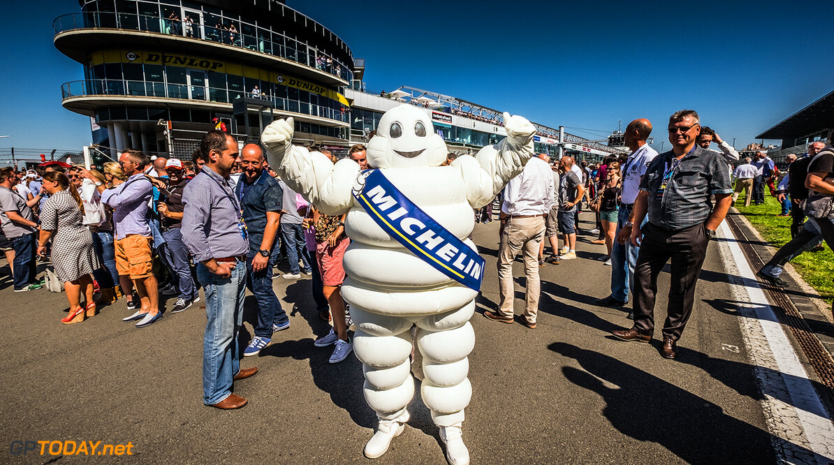 Michelin not interested in F1 return