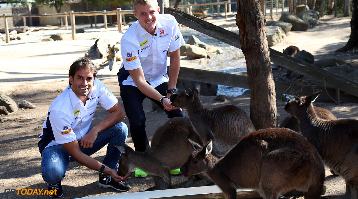 Australian GP Wednesday 16/03/16 Felipe Nasr (BRA) Sauber F1 Team.  Marcus Ericsson (SWE) Sauber F1 Team.  Melbourne Zoo. Australian GP Wednesday 16/03/16 Jad Sherif                       Melbourne Australia  F1 Formula 1 One 2016 One 2016 Kangaroos Nasr Ericsson