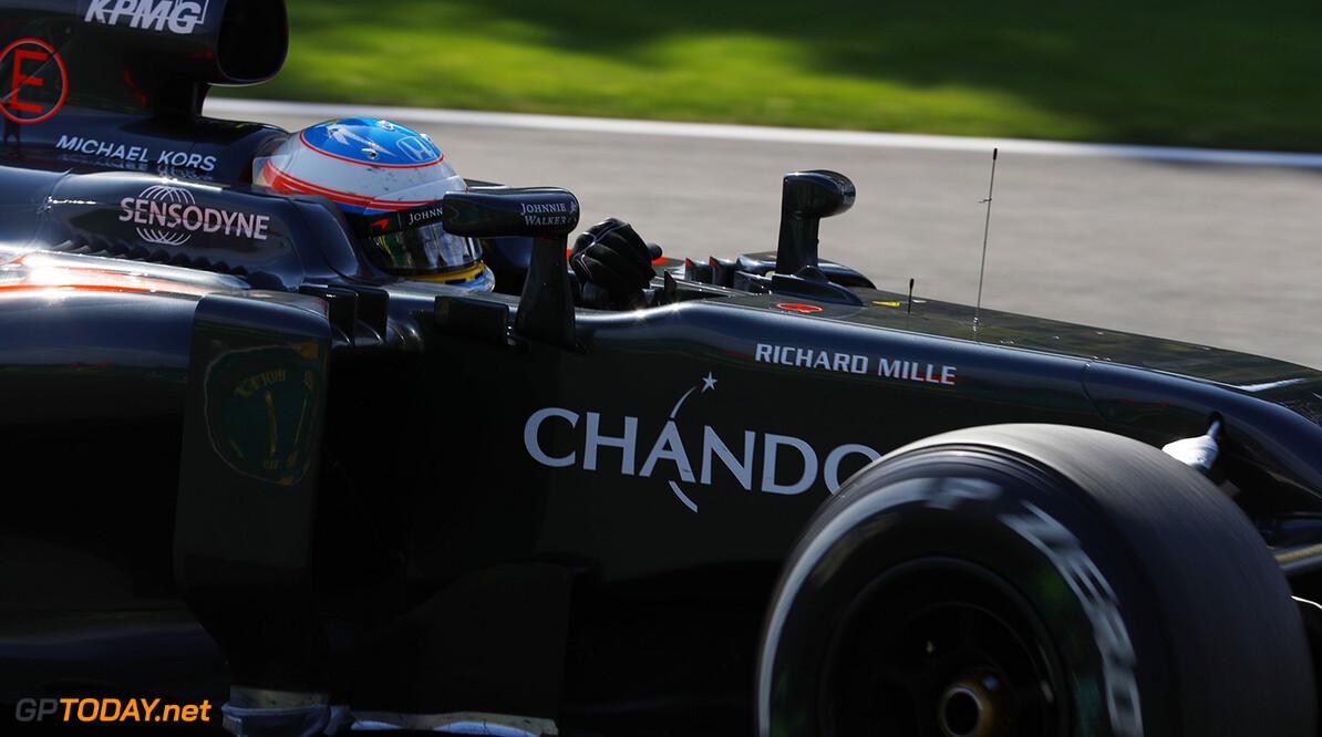 Fernando Alonso on track.  Steven Tee