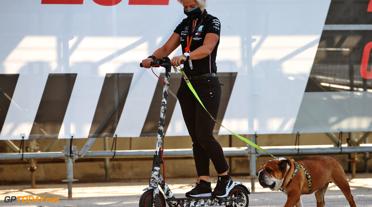Lewis Hamilton's dog with Angela Cullen (NZL)