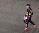 """Berger: """"Complete coureur Verstappen kan voor opschudding zorgen in de top"""""""